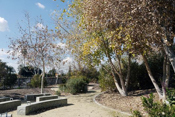 Madrid School Park | Photo: Yosuke Kitazawa