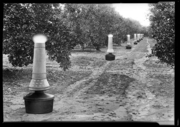 Citrus Smudge Pots, 1928
