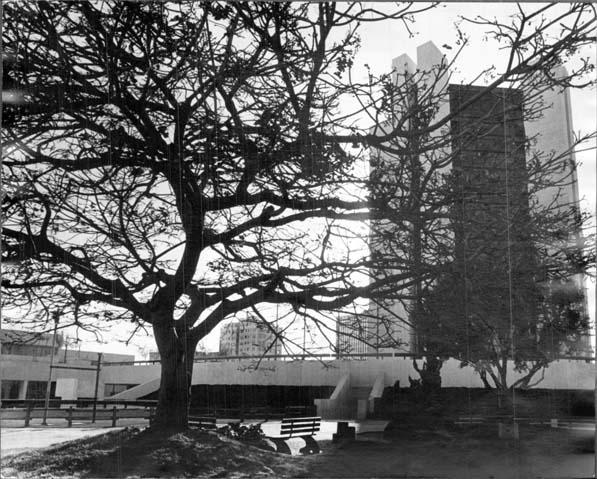 Long Beach City Hall, 1970s
