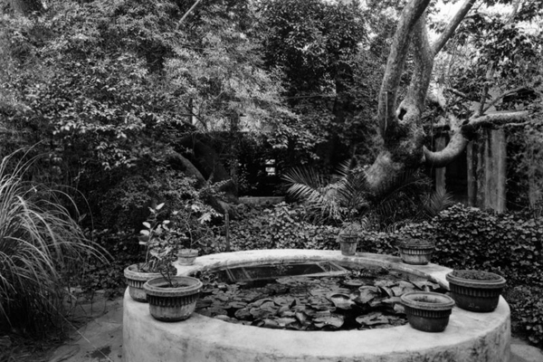Exterior view of Charles F. Lummis' house, showing the fountain and sycamore tree in the patio at the rear of the dwelling | Photo: Security Pacific National Bank Collection/LAPL