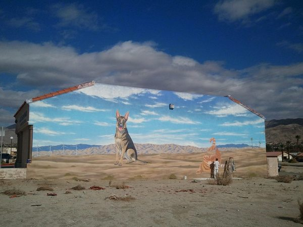 Animal Clinic of Desert Hot Springs I Photo courtesy Ann Woods