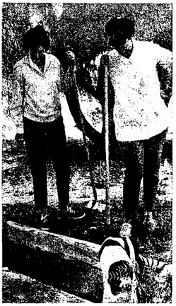 'Mrs. McPhee and Mrs. Keith Swaner, Native Daughters parlor president, examine vandalized open grave' | Los Angeles Times, May 26, 1969