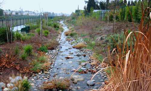 The east bank of the Tujunga Wash Demonstation Project.