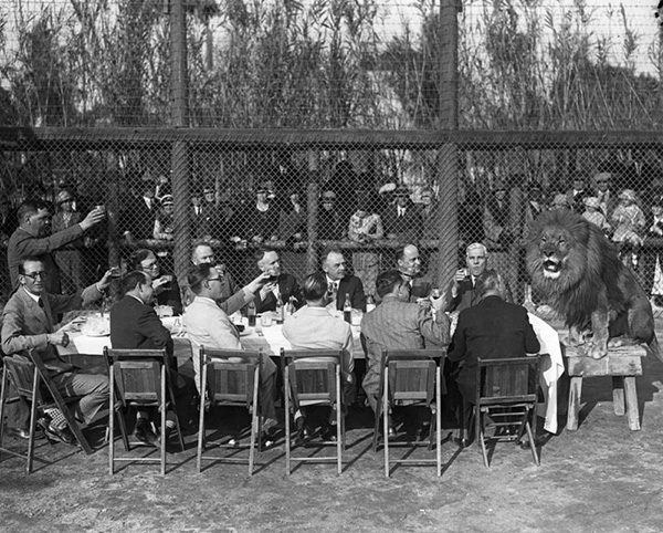 Thirteen men seated at a table, give a toast to a lion sitting at the end of their table. Crowd of onlookers watch from outside the lion's pen. | Courtesy of Los Angeles Public Library