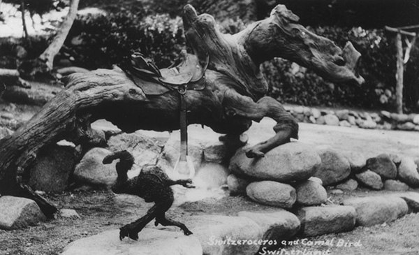 Twisted wood figures, Switzeroceros and Camel Bird, at Switzer-land | Courtesy of the Los Angeles Public Library