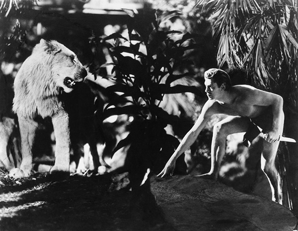 tarzan-and-his-mate-1934-001-johnny-weismuller-lion-00n-bu8