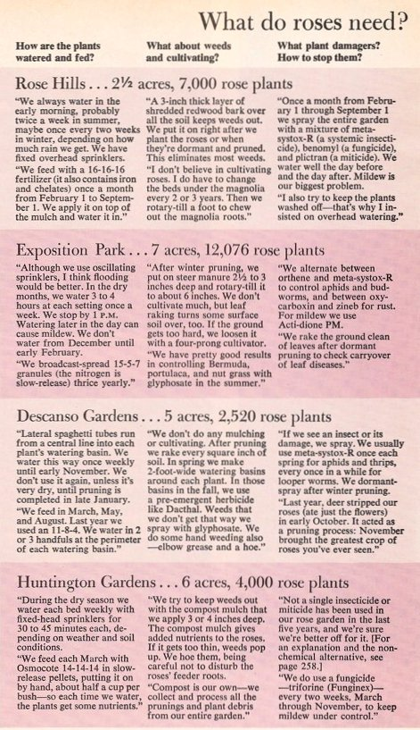 How Los Angeles rosarians care for their roses, chart published in 'Lessons from the Rose Masters,' Sunset, May 1982