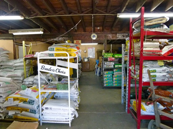 Inside the feed store on Riverside Drive.