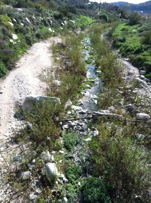 The Arroyo Seco stream bed just south of the Jet Propulsion Laboratory bridge. Photo by Rev. Sonya Sukalski, Director of Young Adult Ministry Unitarian Universalist Legislative Ministry of CA