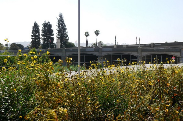 The park is located right north of the Glendale-Hyperion Bridge