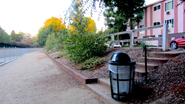 An area recently replanted with native species and a new staircase leading to the street near Valleyheart and Mary Ellen on the south side of the river. | Photo: Zach Behrens/KCET