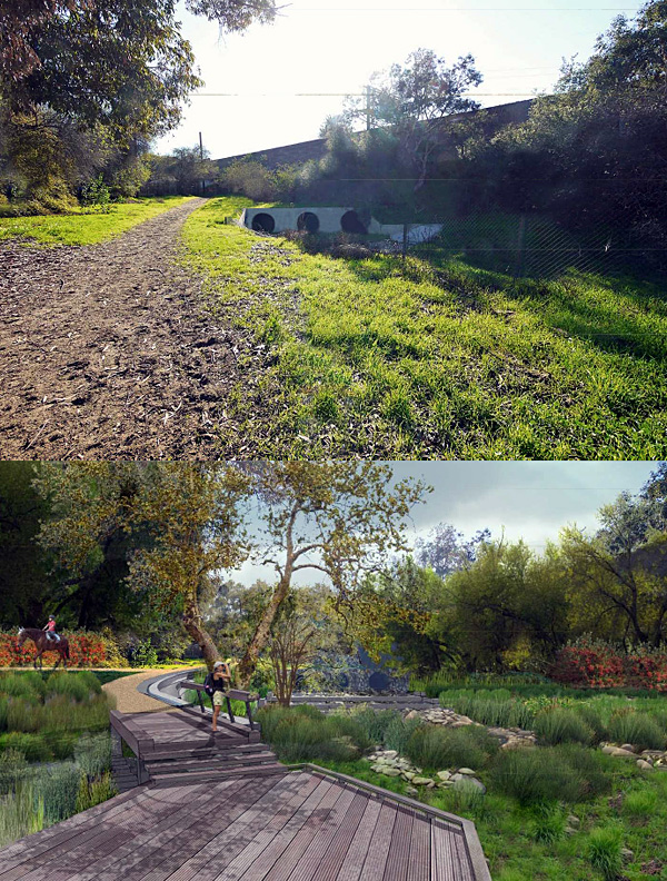 Before and After: Pollywog Park area of Griffith Park