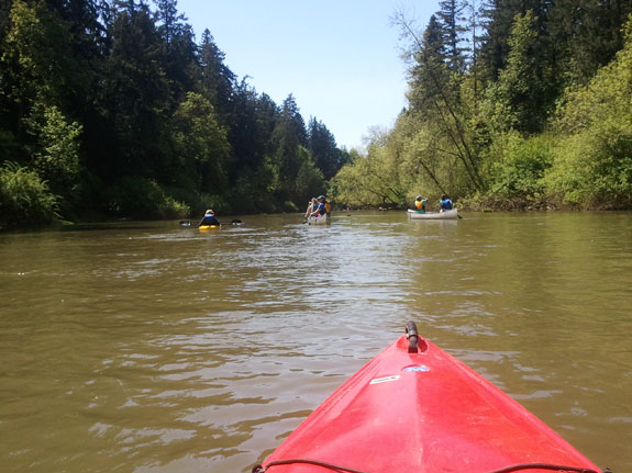 Paddling down the Tualatin River, a tributary of the Willamette River in Portland | Photo by Meredith McKenzie