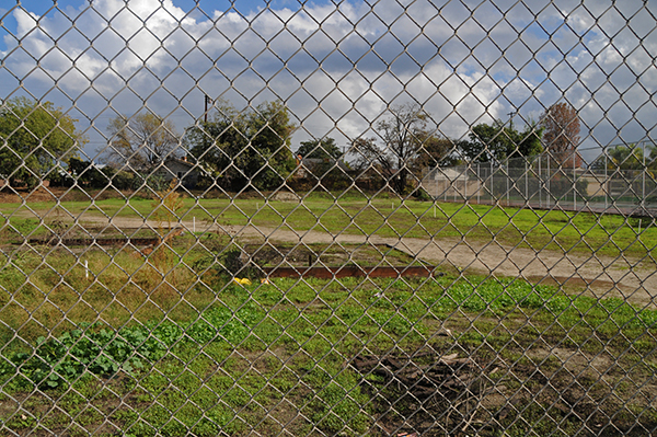 Proposed site for Arroyo High School Garden