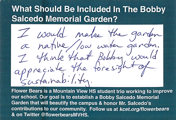 mvhs_postcards_NativeGarden