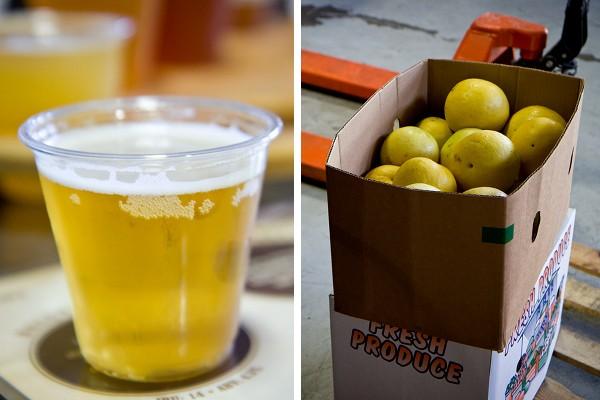 46044-5.19.12-Hangar24-Beer-Grapefruit-Composite
