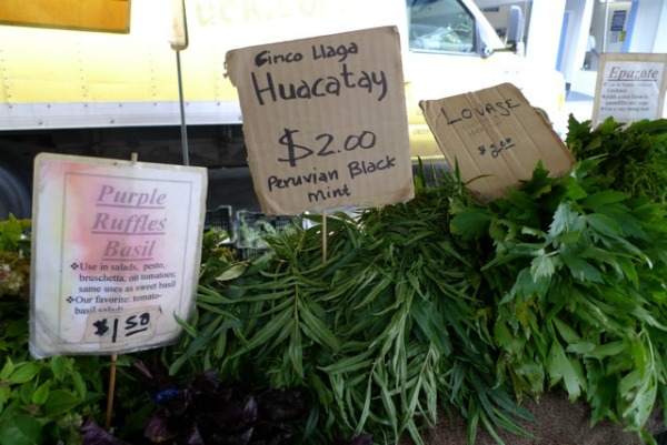 Huacatey and other herbs