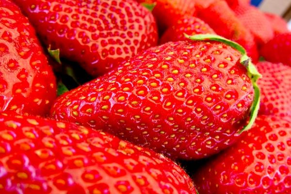 fruitveggies07
