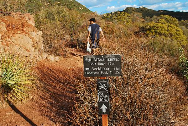 backbone-trail-fin