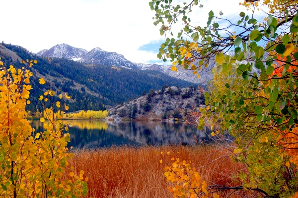 Gull Lake in Mono County on October 14, 2011 | Photo by Alicia Vennos