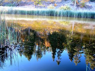 jackson-lake-angeles-national-forest