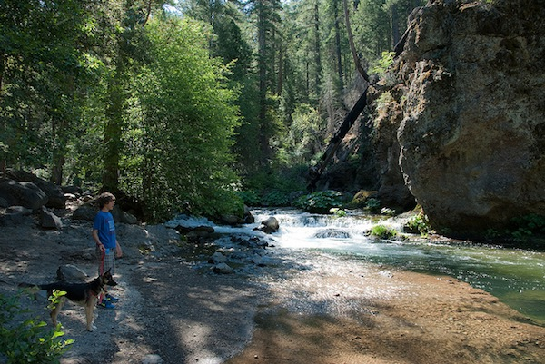It costs at least $5 to enter Lassen Volcanic National Park
