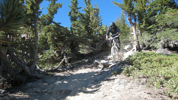 Mountain biking at Mammoth Mountain