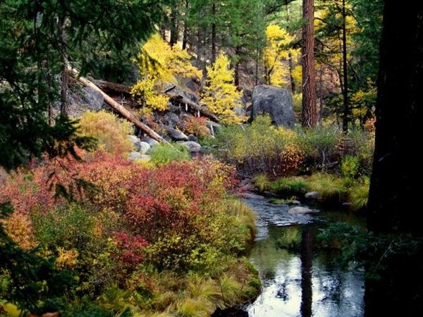 Indian Creek, Plumas National Forest on November 11th, 2010 | Photo by Richard McCutcheon