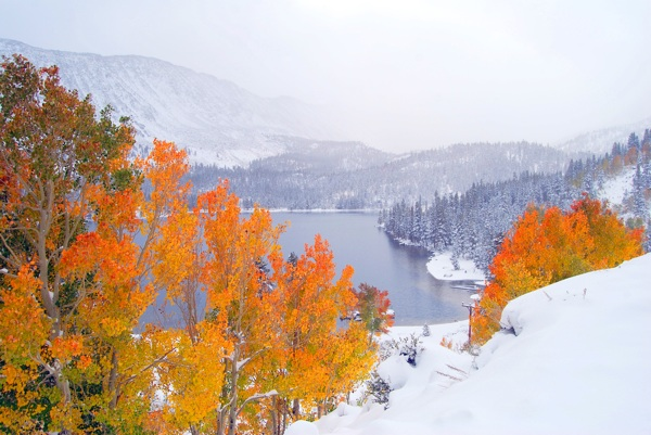 rock-creek-canyon-fall-colors