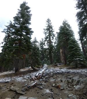 Snow at Devils Postpile National Monument | Photo Courtesy NPS