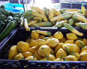 a variety of summer squash