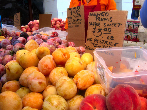 Pluots, photographed by Flickr user Dawn Endico