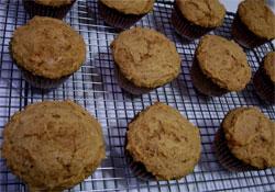mmm pumpkin muffins