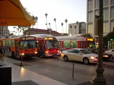 wilshire_boulevard_buses.jpg