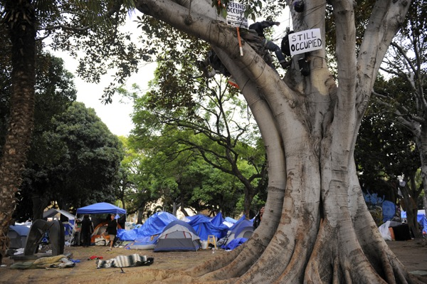 occupy-la-tree-sitter2