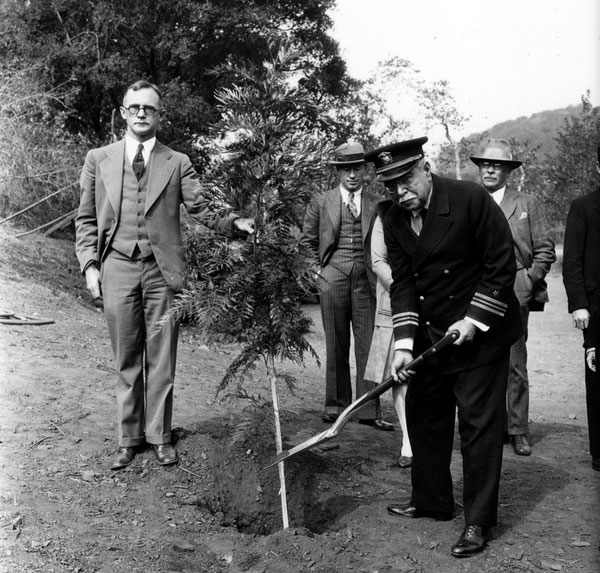 Composer John Philip Sousa plants a tree in the Forest of Fame, 1928. Courtesy of the Photo Collection, Los Angeles Public Library.