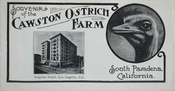 A souvenir booklet from the Cawston Ostrich Farm in South Pasadena. Courtesy of the Autry National Center (object ID 2009.71.7).