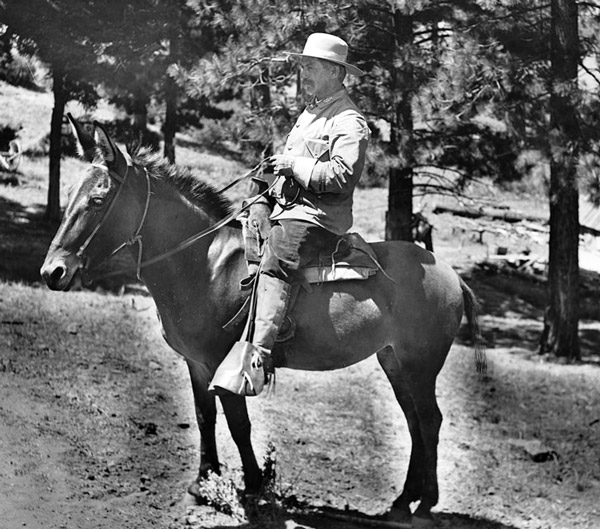 Mounted San Gabriel Timberland Reserve ranger, circa 1900. Courtesy of the Title Insurance and Trust / C.C. Pierce Photography Collection, USC Libraries.