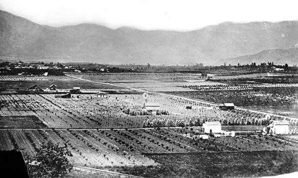 Pasadena circa 1889 was surrounded by plenty of open countryside, which served as hunting grounds for the Valley Hunt Club. Photo courtesy ofd the Title Insurance and Trust / C.C. Pierce Photography Collection, USC Libraries.