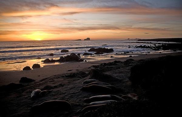 Piedras-Blancas-sunset