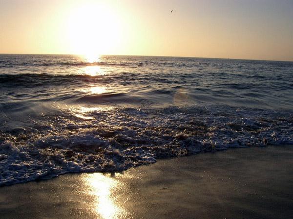 TR_PacificOcean