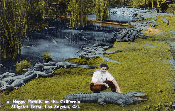 Postcard from the California Alligator Farm, circa 1907. Courtesy of the Werner Von Boltenstern Postcard Collection, Department of Archives and Special Collections, Loyola Marymount University Library.