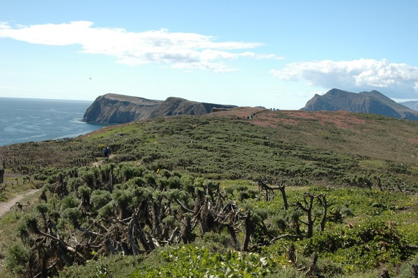 anacapa-island-being-here-now