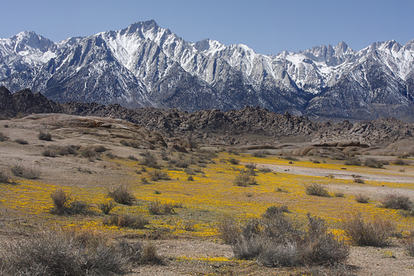 Leaving California? Mount Whitney in Inyo County | Creative Commons photo by Alan Vernon