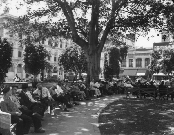 This 138-year-old Moreton Bay fig continues to shade the Plaza to this day. Courtesy of the Photo Collection, Los Angeles Public Library.