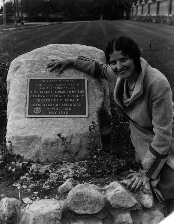 The Daughters of the American Revolution placed a commemorative plaque near a historic sycamore that doubled as a survey point. Courtesy of the Photo Collection, Los Angeles Public Library.
