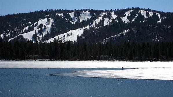 A bald eagle sitting on ice at Big Bear Lake
