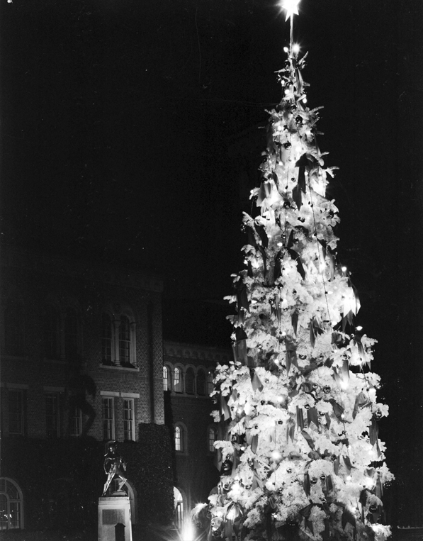 A Christmas tree towers over the statue of Tommy Trojan in front of Bovard Hall, 1961. Courtesy of the USC University Archives.