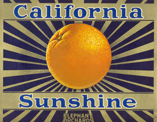 California Sunshine orange crate label. From the David Boulé Collection.