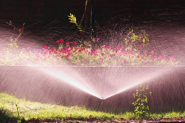 los-angeles-water-lawn-sprinkler-restrictions